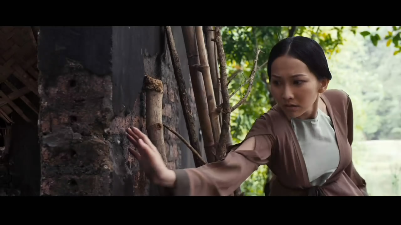 天命英雄 越南美女