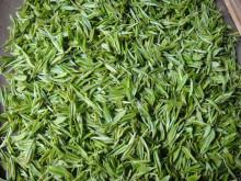 爱民茶合作社 绿茶图片展示