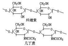 纖維素和幾丁質分子結構圖
