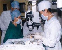 白内障手术