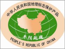 中国万博手机APP之乡 平阴万博手机APP