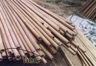 原始的竹木钓竿