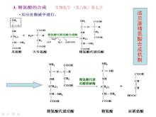 精氨酸转化机制