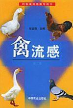 禽流感传染源