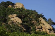 猴石森林公园