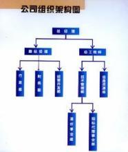 中小企业组织机构简单