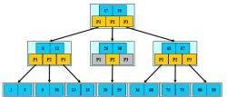 M=3的B-树