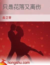 红杏类高h电子小说下载