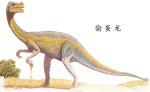 恐龙图片 百度百科