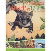 不一样的大自然绘本:森林里的12个月图片