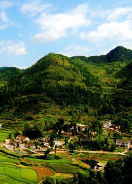 崇仁县哪个乡镇比较好?
