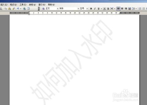 word2003如何添加图片和文字水印以及去除水印图片