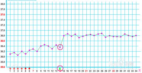 怎么知道女性的排卵期:基础体温曲线法