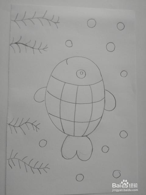 儿童绘画:如何画美丽的小鱼图片