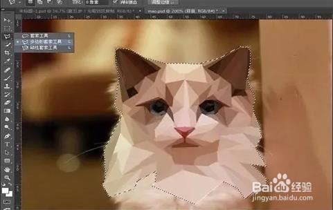 猫式的口令-拜月式口令|瑜伽猫牛式动作及作用|大拜式图片