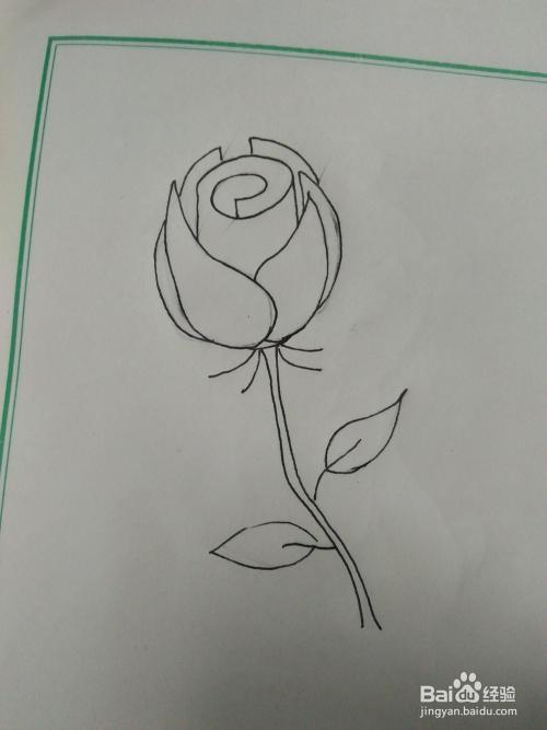 儿童简笔画玫瑰花怎么画图片