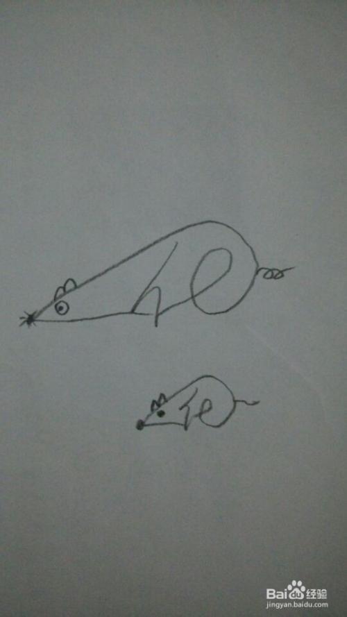 一笔画之小老鼠