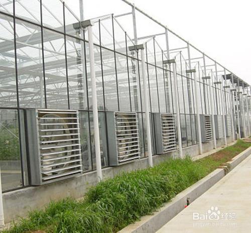 怎么给温室大棚通风?