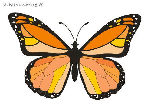 用flash绘制矢量蝴蝶图形图片