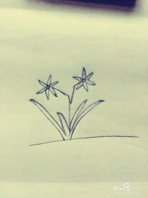手绘系列之教你如何画简易兰花图片