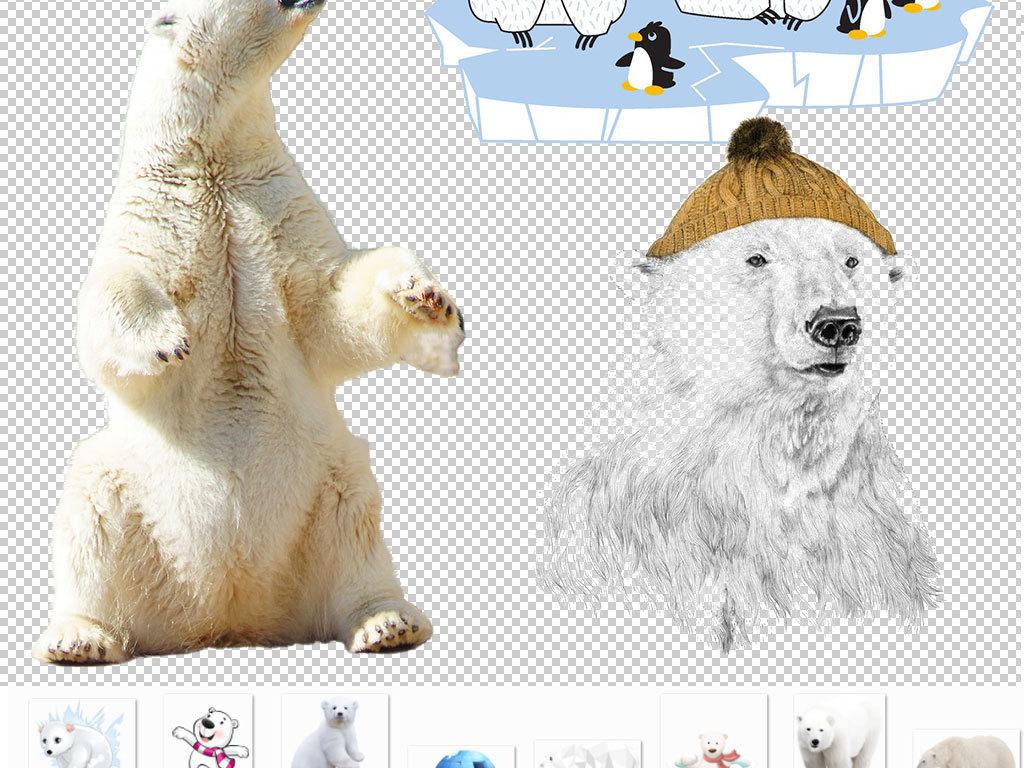 北极熊表哥表情表妹_北极熊内容表妹表情分享展示绘本鳄鱼哥尼流表哥图片