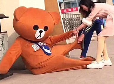 网红熊被恶搞,太搞笑了!