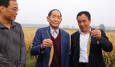袁隆平超级稻再创世界单产纪录