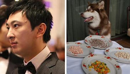 王思聪炫富让爱犬代劳 网友感叹活得还不如狗