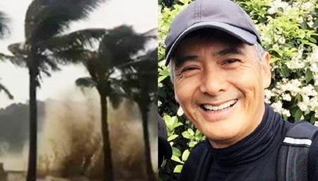 神秘男子冒台风砍树清路