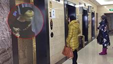 女子深夜回家被尾随 电梯内被陌生男子拖拽