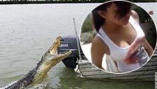 实拍美女鳄鱼池调戏鳄鱼