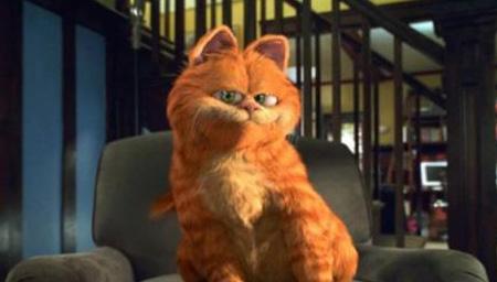 加菲猫 合集版