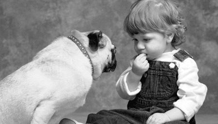 3万年前,人与狗初次相遇的情景