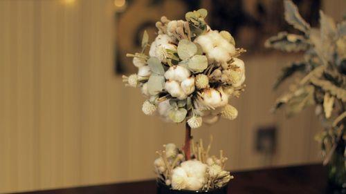 用棉花做一棵不会凋谢的树,冬天摆在家里暖暖哒