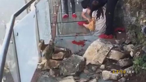 现场:张家界玻璃栈道突发巨石坠落事故 游客被砸伤