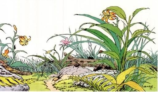 草虫的村落中对视良久