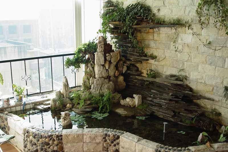 室内养鱼池图片