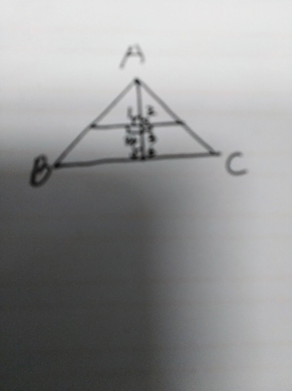 三角形怎么画有6个直角