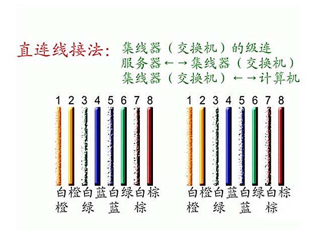 一定要按着线条颜色的来进行系统的排序,一般的网线水晶头的接法主要图片