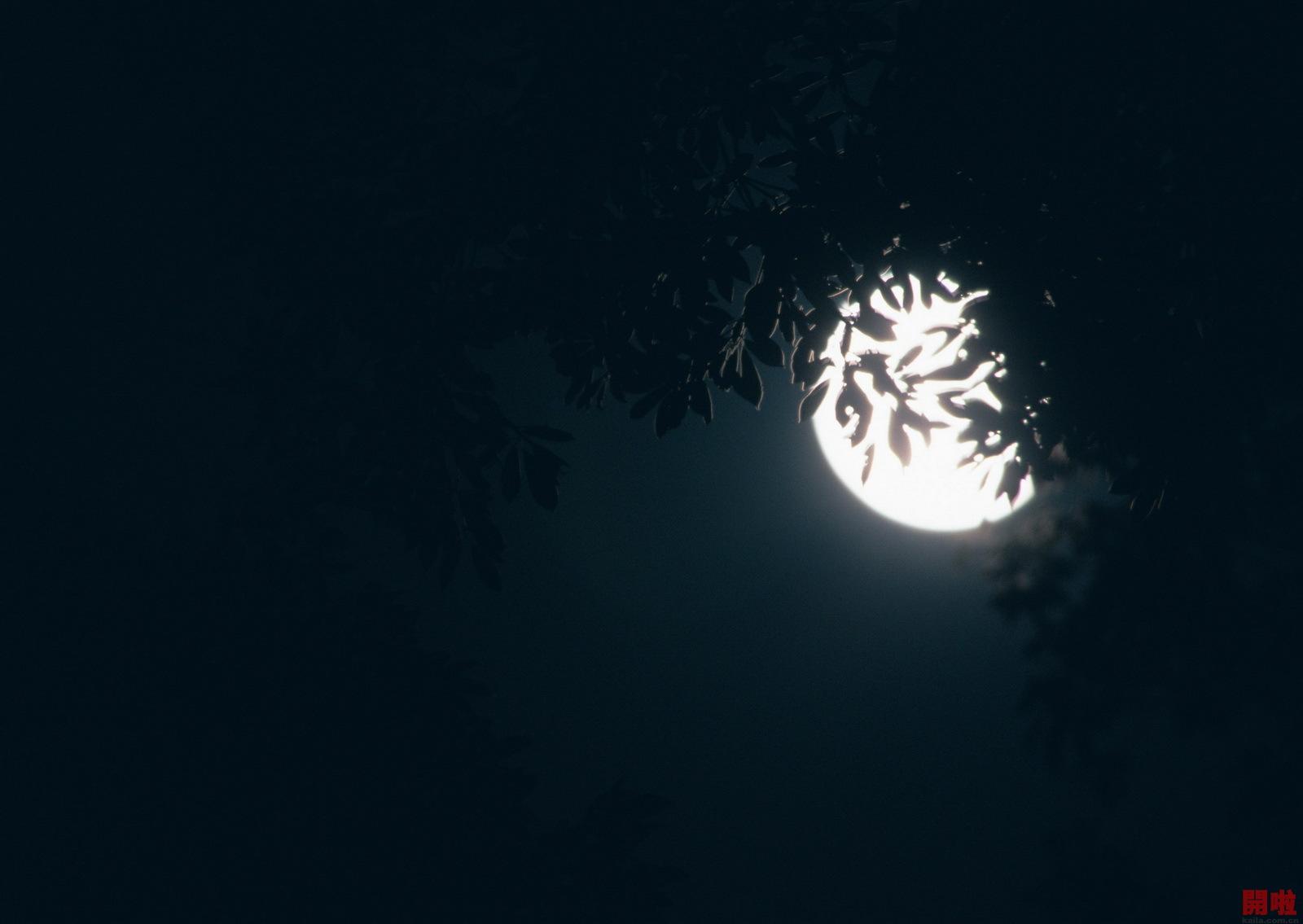 请问有没有描写月亮外形的古诗词?图片
