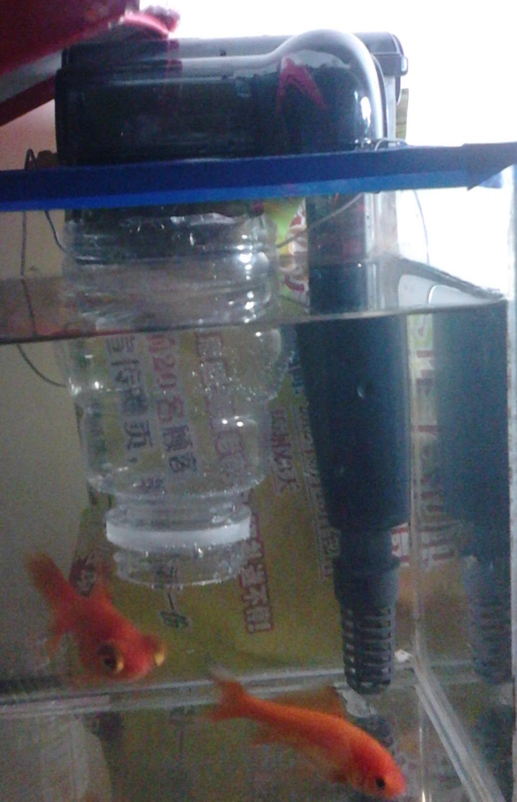 小鱼缸冲水太大,壁挂过滤器,我想弄个大瓶子里面装上滤材,瓶子扎上洞图片