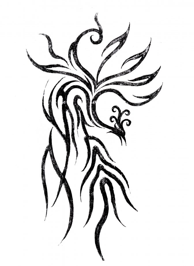 谁有纹身后背凤凰图案小一点的图片