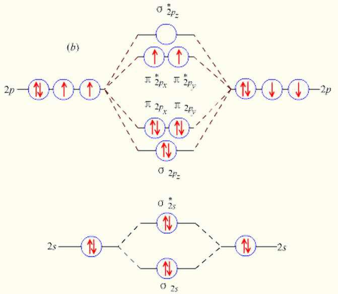 氧气的孤电子对数