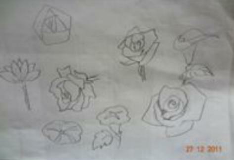 简笔画玫瑰花的画法图片
