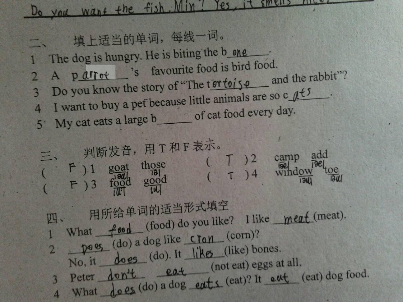 吃的英文_b开头的食物,猫吃的.英语