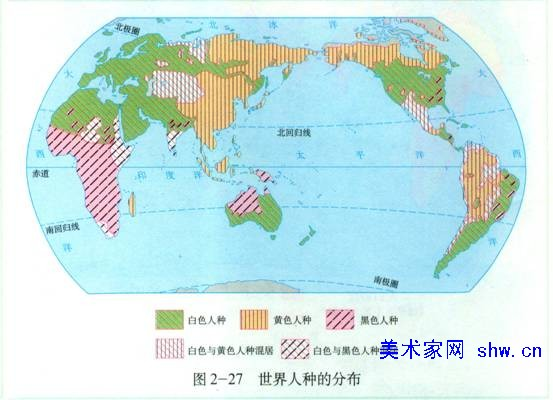 世界人种分类