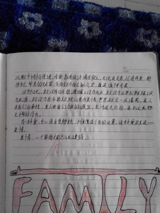 感恩初中的母亲300字校作文成都草图片