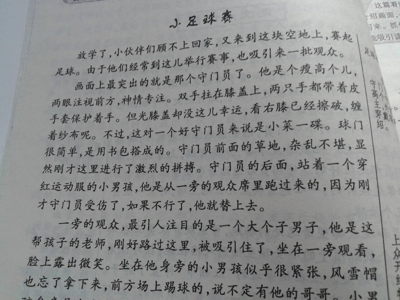 作文300字作文_过春节了作文300字作文大全图片