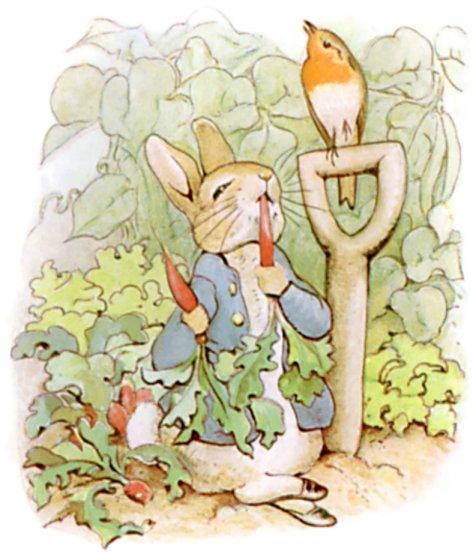你了解《彼得兔动画片》的作者吗?