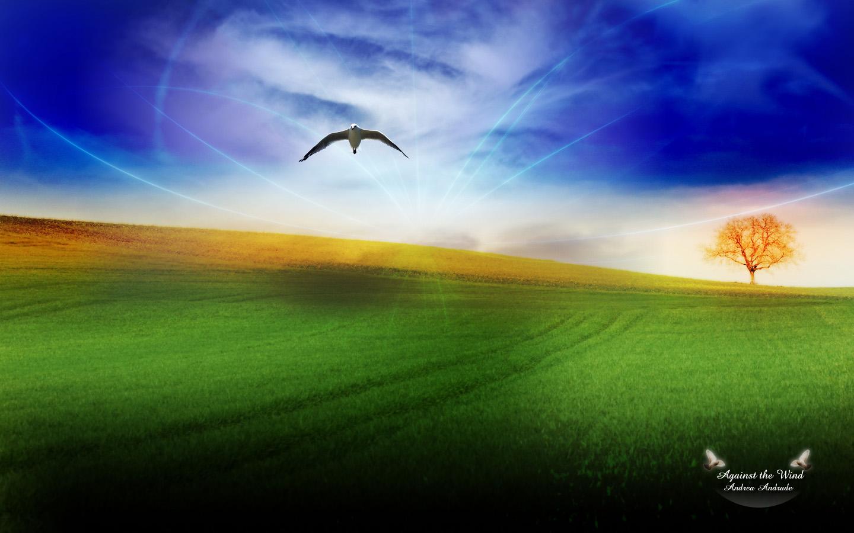 同问 最普通的蓝天白云绿草地的电脑 桌面 壁纸图片